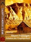 Shane-Flannigan-Schatten-der-Vergangenheit